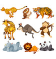set wild animals vector image vector image