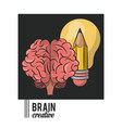 brain creative concept icon ilustration vector image vector image
