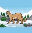 cartoon of cougar in the snowy mountain vector image vector image