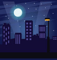 city at night cartoon vector image