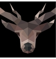 Deer low poly polygons horned vector image vector image