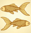 Fish cute background vector image vector image