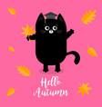 hello autumn black cat graduation hat academic vector image