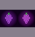 purple and violet neon grape vector image