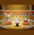 cartoon rabbits circus performance on the arena vector image vector image