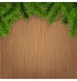 fir branches on wooden boards vector image vector image