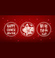 happy new year in chinese year pig vector image