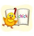 Little chick and a book vector image vector image