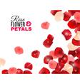 Rose Flower Petals Background vector image vector image