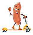 sausage ridding scooter on white background vector image