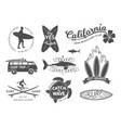 surf boards emblem and badges set signs vector image vector image