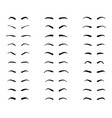 types and forms eyebrows vector image