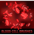 blood cell brushes vector image vector image