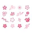 Cherry blossom japanese sakura icon set vector image vector image