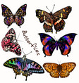 collection realistic colorful butterflies vector image vector image
