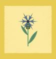 flat shading style icon plant flower centaurea vector image vector image