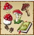 Set of poisonous mushrooms and cookbook vector image vector image