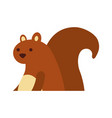 autumn season squirrel animal forest vector image vector image