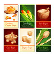 cane sugar vertical cards vector image