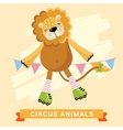Circus Lion animal series vector image