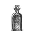 drawn blank whisky bottle with flip cap vector image vector image