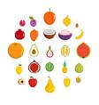 fruits icons set flat style vector image