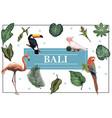 hand drawn bali bright concept vector image