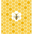 Sweet geometric pattern with honeycomb and bee vector image vector image