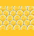 yellow sliced lemons pattern on white background vector image