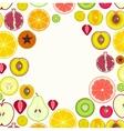 Fruit Slices Round Frame vector image