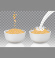 bowls of oat flakes realistic vector image