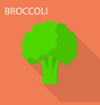 broccoli icon flat style vector image vector image