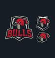 bulldog mascot logo design vector image
