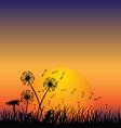 dandelion in wind vector image