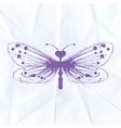 Dragonfly-blot on crumpled paper vector image vector image