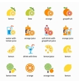 Orange lemon lime and grapefruit icons vector image vector image