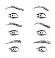 Set of different form eyebrows vector image vector image