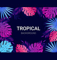summer tropical design for banner poster card vector image vector image