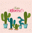 viva mexico colorful poster with cactus plants vector image vector image