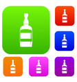 brandy bottle set color collection vector image vector image