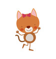 colorful caricature of cute expression female cat vector image vector image
