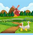 duck family at farmland vector image vector image