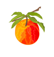 Peach branch with leaves vector image