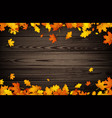autumn background with orange leaves vector image vector image
