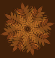 Autumn leaves vintage ornament greeting card vector image