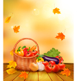 Autumn vegetables background vector image vector image