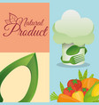 food kitchen natural product poster vector image vector image