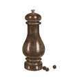 hand drawn pepper mill vector image