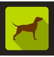 Hunting dog icon flat style vector image