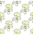 Seamless cartooned cauliflower vegetable vector image vector image